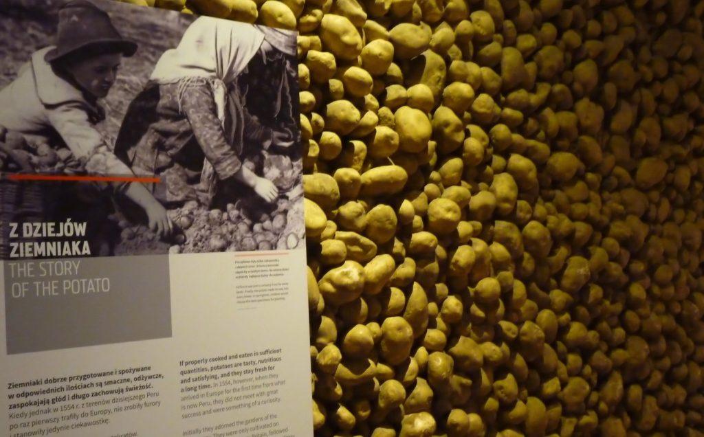 Ściana z ziemniaków