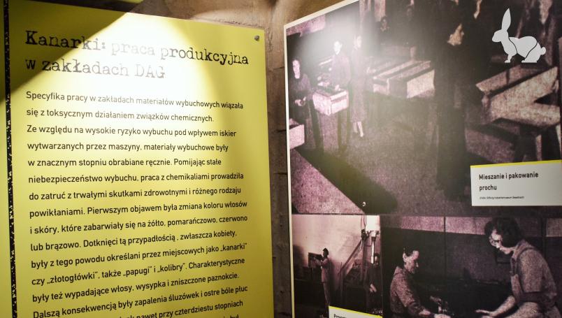 Spisane historie pracowników DAG