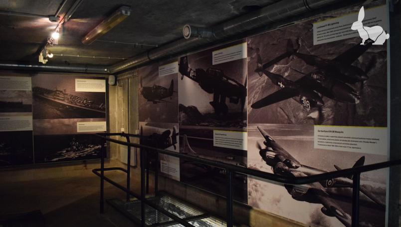 Wystawa zdjęć uzbrojenia - od dawnych czasów po współczesne