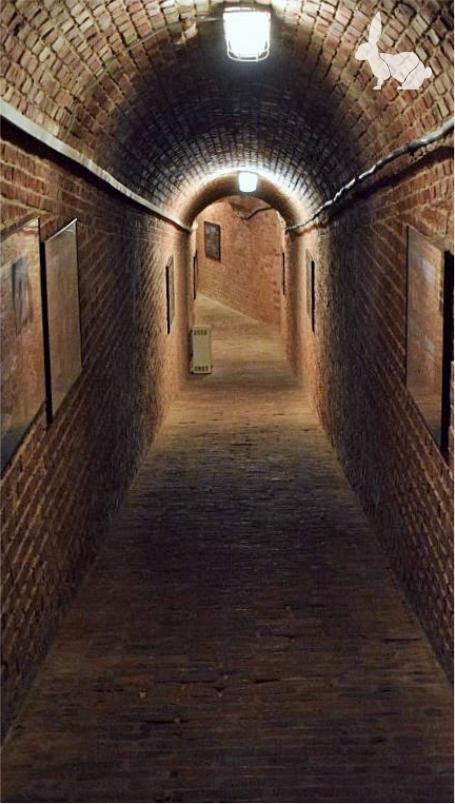 Zimne, ciemne, korytarze