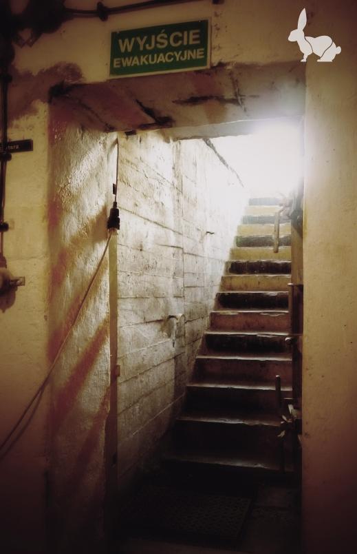Wejście do schronu pod TOS-em